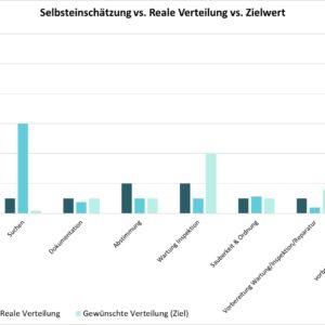 Potentialanalyse: DILO Excel-Vorlage für Aufnahme und Auswertung (lizenzierte Version)