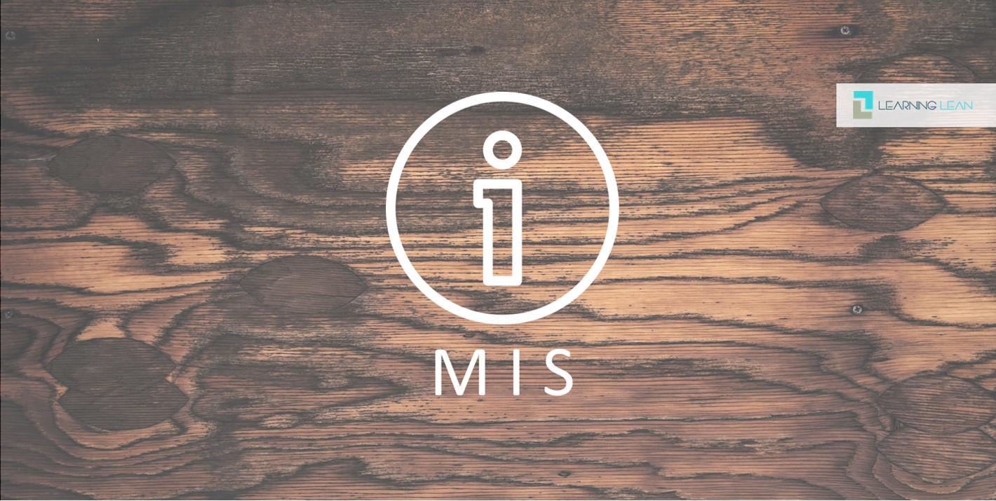 Management-Informations-System (MIS) – Potentialanalyse für ein ganzheitliches Verbesserungssystem